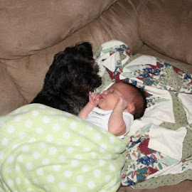 by Amanda Edwards - Babies & Children Babies