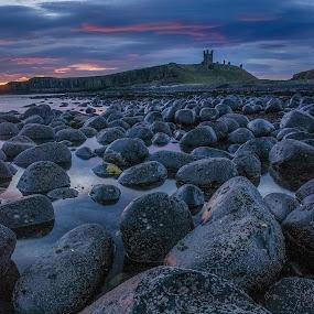 Dunstanburgh boulders by Darren Whiteley - Landscapes Beaches ( boulders, northumberland, castle, sunrise, dinstanburgh,  )