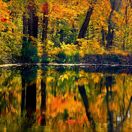 Fall and the reflection by GPictoria -Gopu's Photography - Landscapes Waterscapes ( reflection, nature, color, fall, fall and the reflection, beauty )