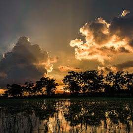 Ray of hope  by Ujjal Das - Landscapes Sunsets & Sunrises ( nature, sunset, landscape )