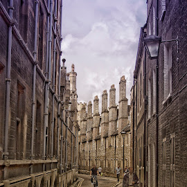 Street in Cambridge by Dez Green - City,  Street & Park  Street Scenes ( streetphotography, street, street scene, cambridge, roadway, street photography,  )