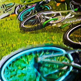 On The Grass by Carl van Dyk - Transportation Bicycles