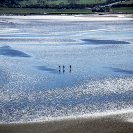 Walking on the water, Edinburgh by Marcelo Fetz - People Street & Candids ( edinburgh; cramond island )