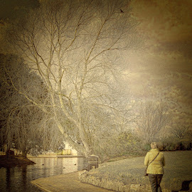 Alone by Dave Smith - Digital Art People ( water, isolation, art, candid, landscape )