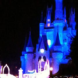 Disney Castle by Anna Tripodi - Buildings & Architecture Public & Historical ( cool, color, castle, disney, black,  )