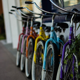 Balboa Bike Rentals by Zach Miller - Transportation Bicycles ( contrast, cruising, colorful, balboa, bikes )