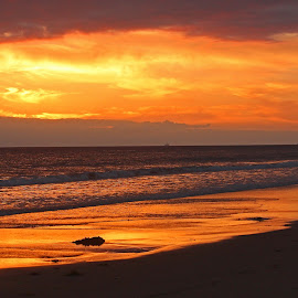 by Jeannine Jones - Landscapes Sunsets & Sunrises