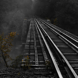 Around the Bend by Glenn Robinson - Transportation Railway Tracks ( railroad tracks, fog, trees, bridge, mist )