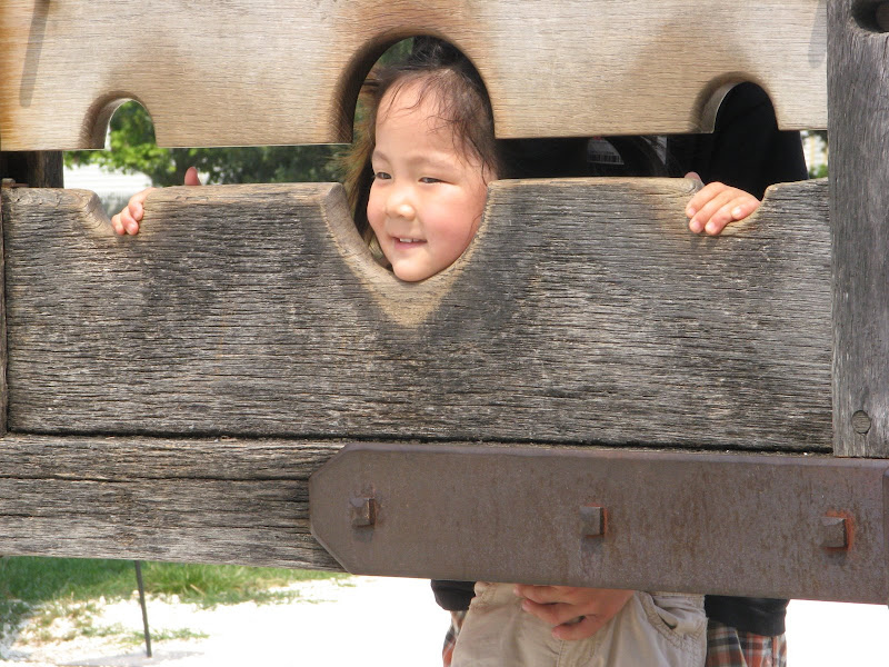 Li-Li in the stocks