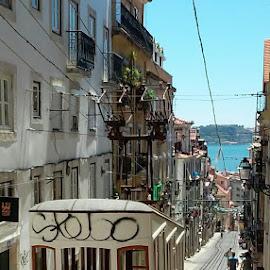 Lisbon by João Ascenso - Instagram & Mobile Android ( lisbon )