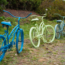 Bike Fence by Craig Lybbert - Transportation Bicycles ( fence, old, color, bikes, antique, seabrook )