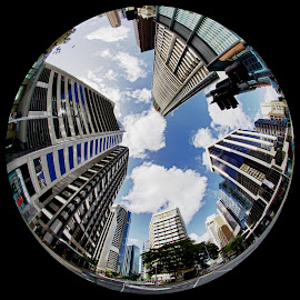 Eagle and Queen by Andrew Rock - City,  Street & Park  Skylines ( circular, fisheye, hdr, australia, high dynamic range,  )