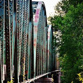 Montezuma Bridge by Tricia Scott - City,  Street & Park  Neighborhoods ( indiana, park, road, bridge, metal bridge, river )