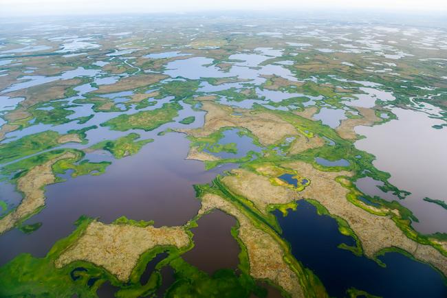 Alaska Yukon Kuskokwim Delta