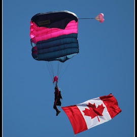 Oh Canada!!  by Dale Carney - News & Events Entertainment ( sky diver, canada, fun, jump, airshow )