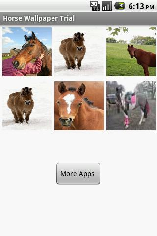 Horse WallPapers Trial