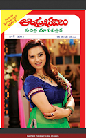 Screenshot of Andhra Bhoomi Monthly