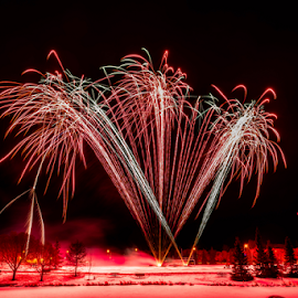 by Joseph Law - News & Events World Events ( firework competition, winter, sheerwood park, snow, trees, light poles, celebration, city park )