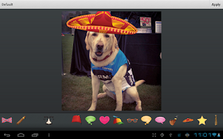 Screenshot of Photo Effects Plugin by Aviary
