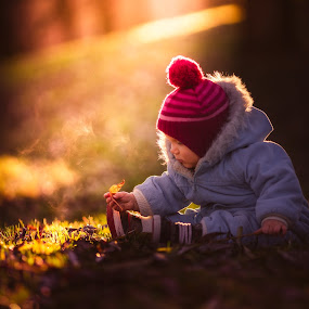 Voyage of discovery by Niklas Jumlin - Babies & Children Children Candids ( babies, explore, heavenly, manualfocus, holding, moment, children, leaf, leaves, exploring, child, story, explorer, leafs, nature, autumn, lifestyle, beforedark, baby, light, orange, heaven, discover, candid, kids, moments, portrait, shadows, emotion, magic, voyage, outdoor, naturallight, sonya7, surprise, discovery, natural, world, Travel, People, Lifestyle, Culture,  )