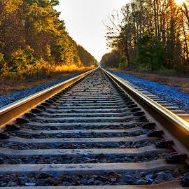 Reflecting the Sun by Carol Plummer - Transportation Railway Tracks ( railway, train, transportation, tracks, sun, reflecting )