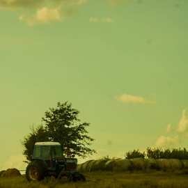 dull skies by Trey Walker - Novices Only Landscapes ( dull, colors, nikon, tractor, colours )