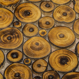 Wooden Furniure by Mukesh Chand Garg - Abstract Patterns (  )