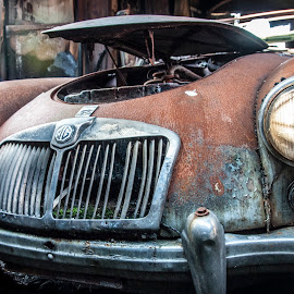 abandoned MG by Nicky Staskowiak - Transportation Automobiles ( urbex, mg, belgium, burn, decay,  )