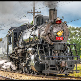 Old Steamer by Tony Roma - Transportation Trains ( illinois, engine, train, museum, steam )