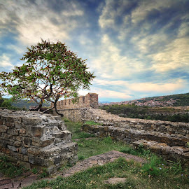Tsarevets Fortress by Ivan Ivanov - Landscapes Travel ( fortress, historic district, tsarevets, evening, bulgaria )