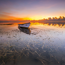 Your Beauty by Gede Suyoga - Landscapes Waterscapes