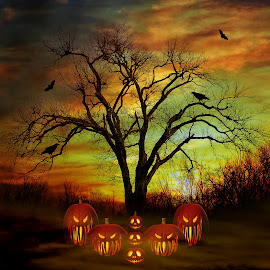 Halloween Night by Elizabeth Burton - Digital Art Places ( clouds, scary, creepy, fall colors, jack o'lanterns, spooky, pumpkins, pumpkin carvings, crow, halloween, raven, sky, tree, fog, sunset, all hallows eve, bat, mist, happy halloween,  )