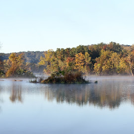 Early Morning by Brenda Hooper - Landscapes Waterscapes ( water, park, fog, reflected, sun,  )