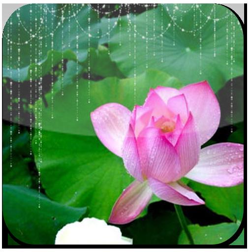 每日必聽國學 唐詩三百首 (有聲圖文簡約版) 教育 App LOGO-硬是要APP