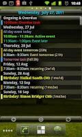 Screenshot of Agenda Widget for Android