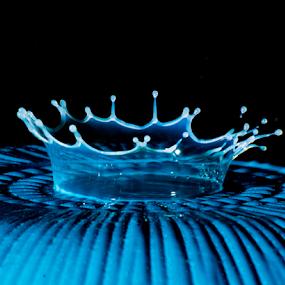 Milk Drop by Andy Goo - Novices Only Abstract ( water, macro, splatter, splash, blue, crown, milk, drop, white )