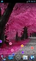 Screenshot of Blossom Live Wallpaper