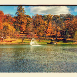 by Lloyd Litten - City,  Street & Park  City Parks ( fall, color, colorful, nature,  )