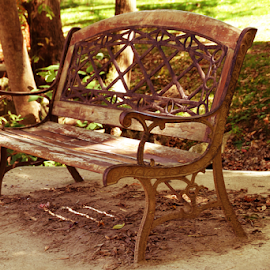 The Iron Bench by Marsha Biller - Artistic Objects Furniture ( public, bench, furniture, object )