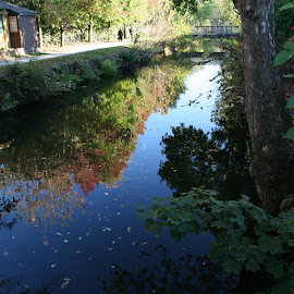 Autumn reflections in the canal of Lambertville, NJ by Dianne Collins - City,  Street & Park  City Parks