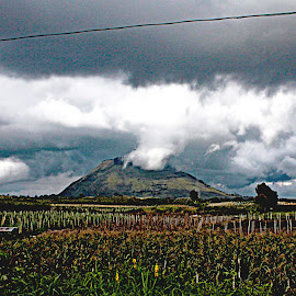 days after the volcano spoke by Magdalena Wysoczanska - Landscapes Weather ( clouds, volcano, mountain, nature, indonesia, moody, force, landscape, fields )