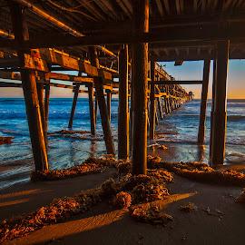 San Clemente Pier Sunset by Patrick Flood - Buildings & Architecture Bridges & Suspended Structures ( canon, san clemente, photosbyflood, warm colors, kelp, waves, sunset, california, pier, beach, side light )