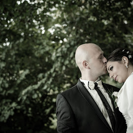 Milica & Milan by Jovan Barajevac - Wedding Bride & Groom ( love, kiss, bleach, nature, wedding, bride, groom )