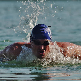 swimmer by Barbara Podlahová - Sports & Fitness Swimming