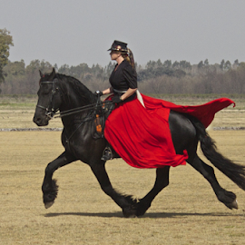 Stepping Out by Venetia Featherstone-Witty - Animals Horses ( black stallion, horse, lady in red, friesen stallion, lady with horse, lady on stallion,  )