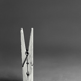 Clothes Pin by Cynthia Linderbeck - Novices Only Objects & Still Life