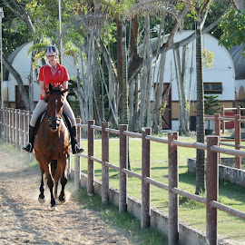 Horse Riding by Koh Chip Whye - Sports & Fitness Other Sports (  )