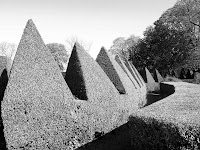 the toblerone hedge
