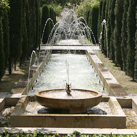 Fountains at Palma Cathedral.. Palma Majorca. by Stephen Jones - Buildings & Architecture Statues & Monuments