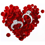 Engagement Rings Wedding Rings APK Image